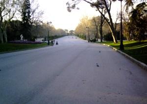 EL RETIRO en otoño, al amanecer, en foto tomada desde mi bici