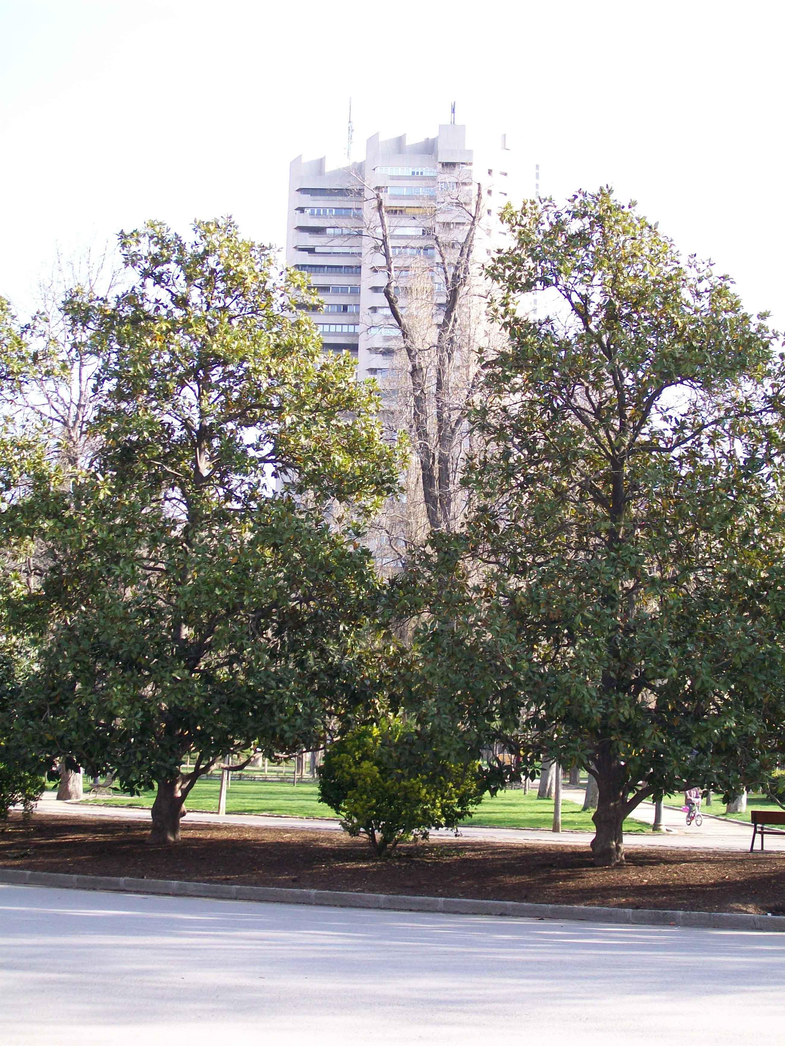 torre-de-valencia-copia