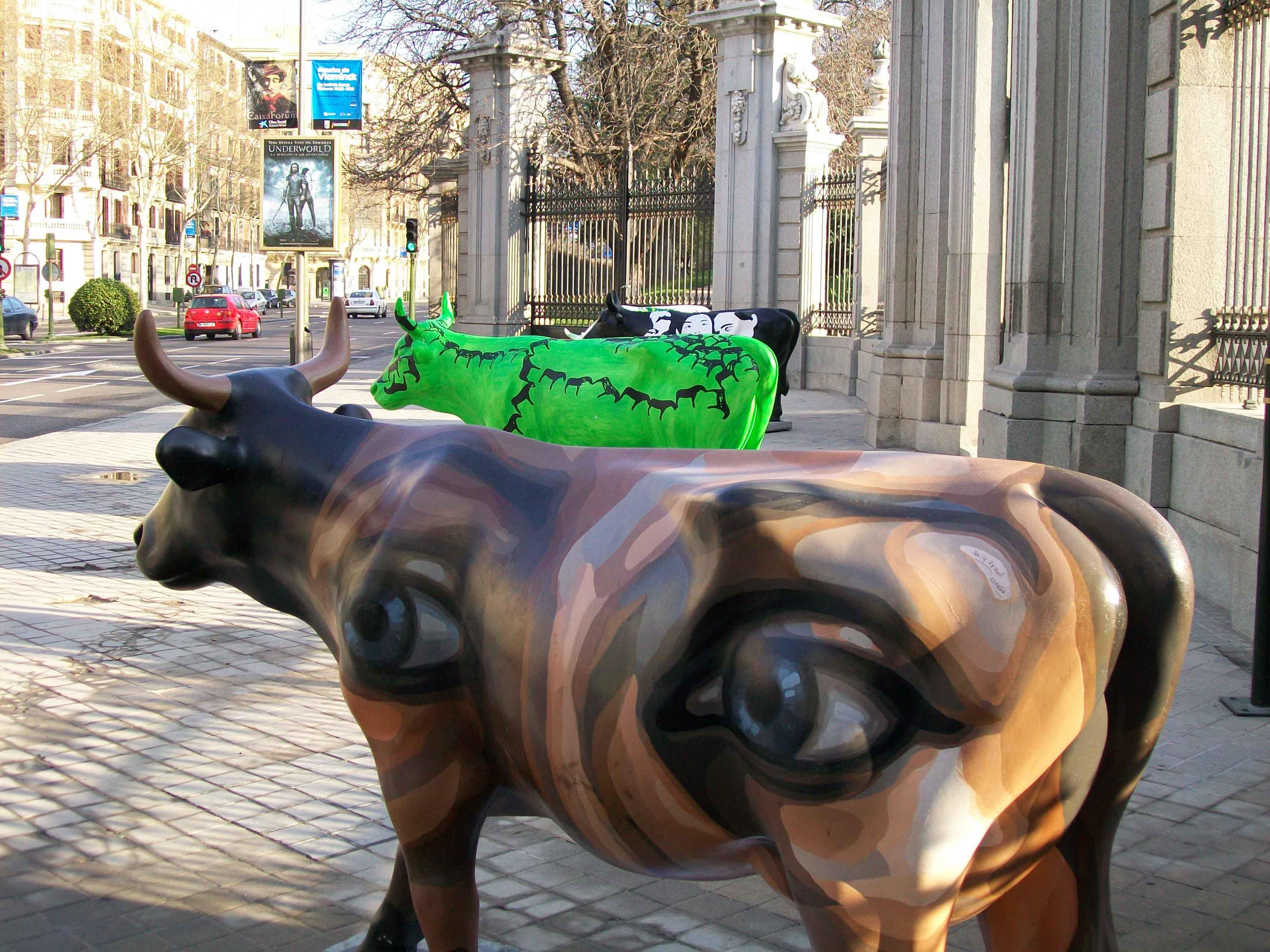 vacas-copia